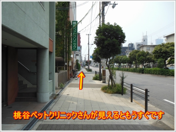 鶴橋駅(地下鉄)からのアクセス6