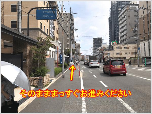 ここからは、ずっと道路に沿って直進してください。